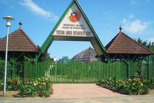 nyíregyháza nevezetességei képekben - Google keresés