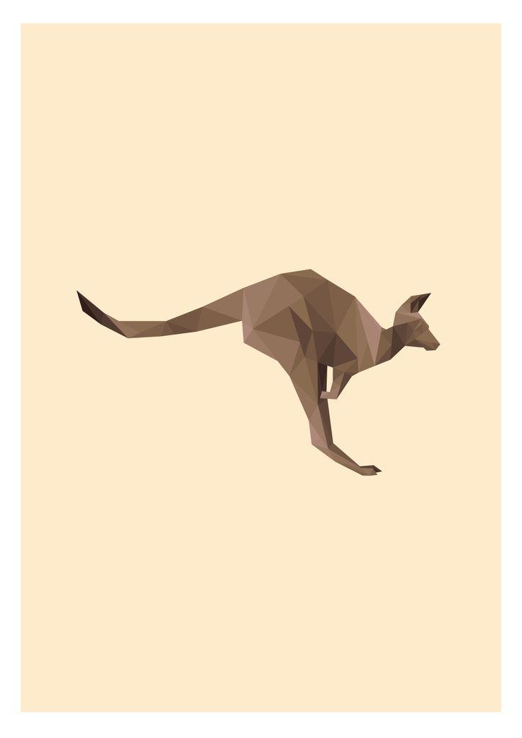 Australian Kangaroo Illustration