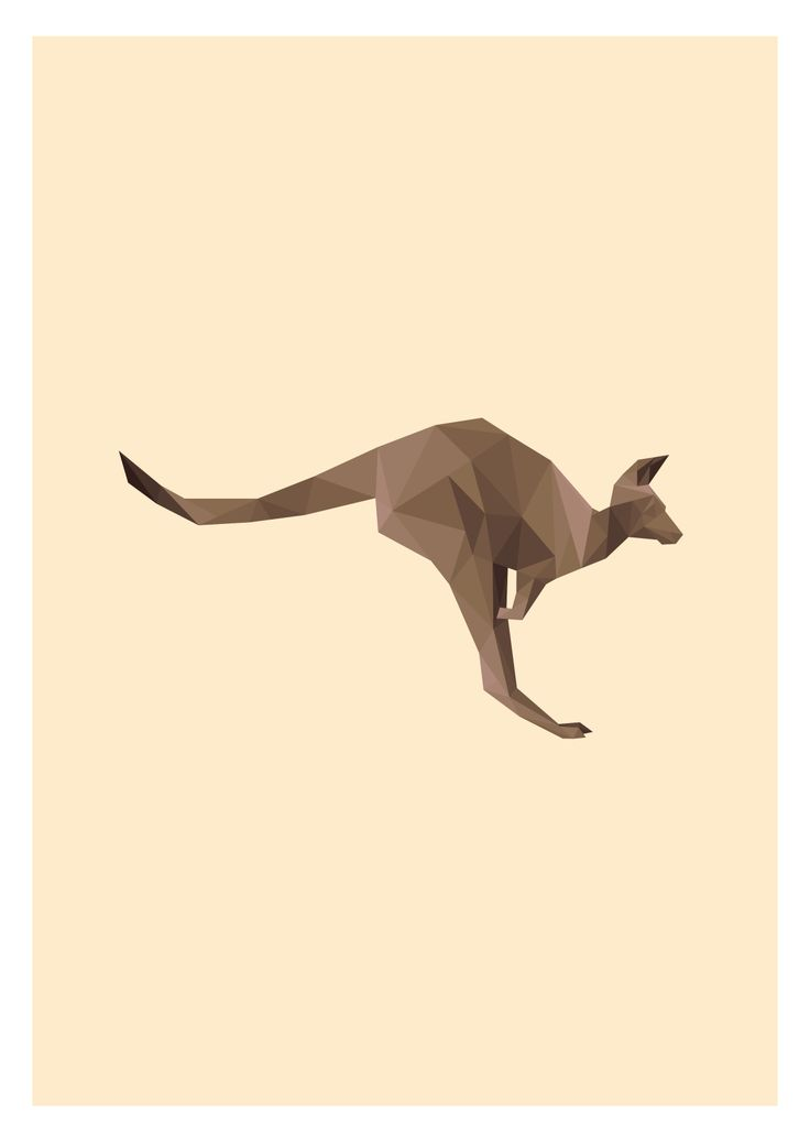 Australian Kangaroo Illustration