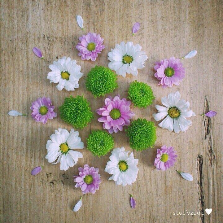 Flower petal mandala... by StudioZakka on IG