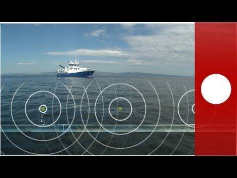 Le onde acustiche, sentinelle dell'ambiente marino - futuris - YouTube