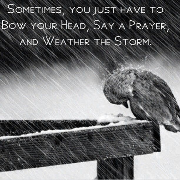 Bow, pray, and weather the storm. I am STRONGER CUZ OF the spiritual storms i have gone thru in my life to bring me closer to Jesus Christ with dvery step when the devil THOUGHT He was using it to make me stumble... The Lord made me STRONGER instead...lol AND IM STILL STANDING AFTER ALL IVE BEEN THRU LOL: