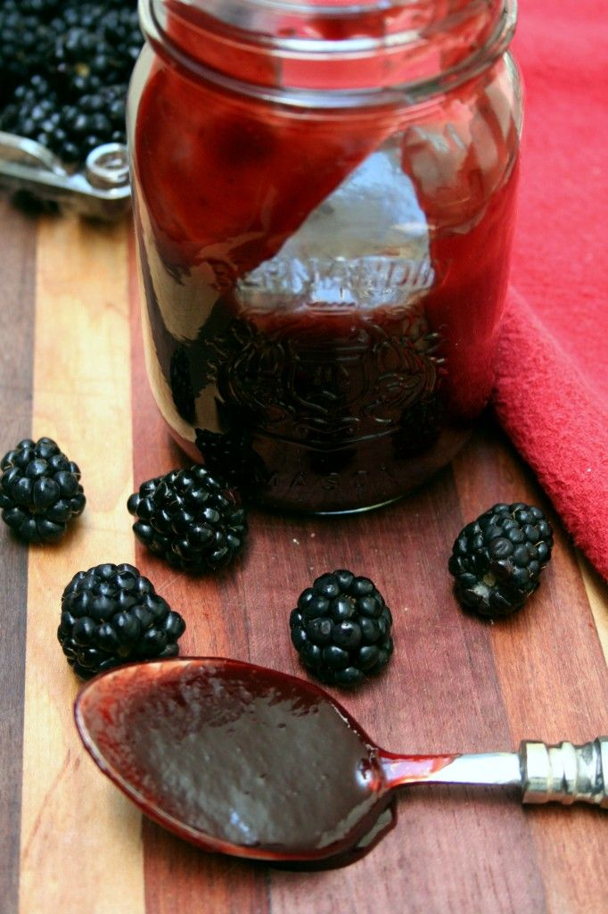Chipotle Blackberry BBQ Sauce ~~~ Ingredients ~ 1/2 cup Apple Cider Vinegar ~ 1/2 cup Brown Sugar ~ 1 cup Ketchup ~ 2 TBS Worcestershire ~ 2 tsp Liquid Smoke ~ 2 1/2 whole Chipotle Peppers in Adobo Sauce ~ 1 package {6 ounces} Blackberries ~ 1/4 cup Blackberry Jam ~ Kosher Salt and Pepper, to taste