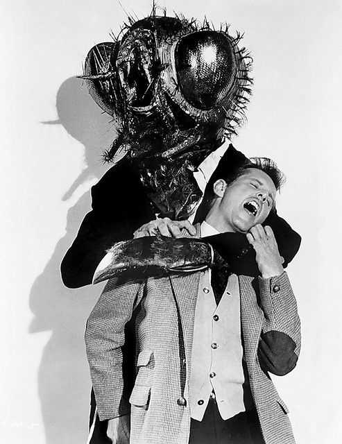 """1958 - The Fly .I STILL use the """"Help me! ... Help me!"""" line from this movie ALL the time!!!!!"""