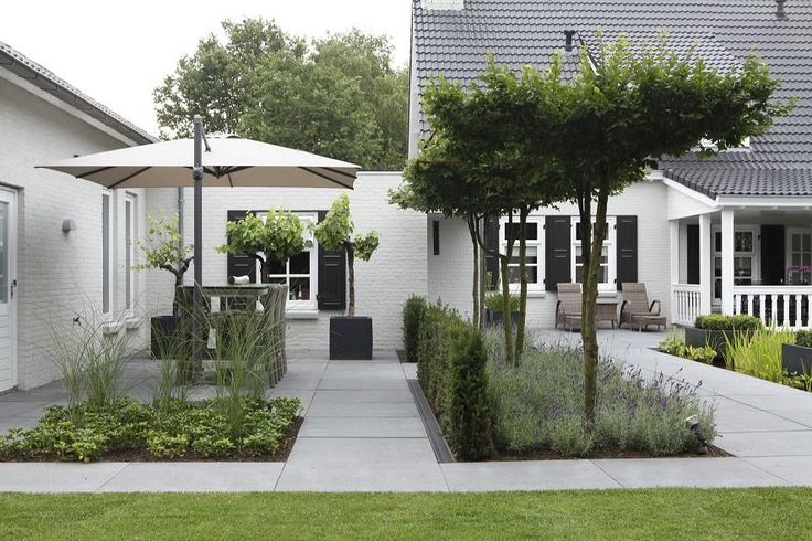 rectilinear shapes give structure but softened by planting