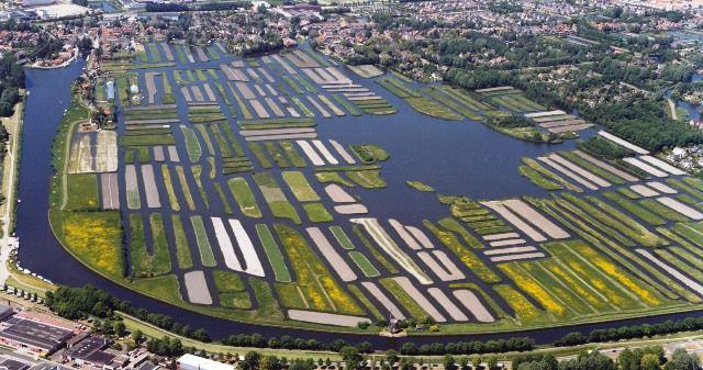 """Het Oosterdelgebied is uniek in Nederland. Het is 80 hectare groot en bestaat uit ruim 200 eilanden. Het is het laatst overgebleven deel van het """"Rijk der Duizend Eilanden"""", dat oorspronkelijk meer dan 15.000 eilanden telde. Oosterdel.nl - Home"""