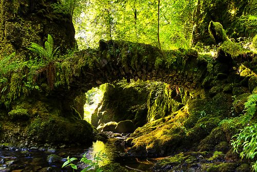 """Secret tooth fairy bridge"" by Richard Hunter"