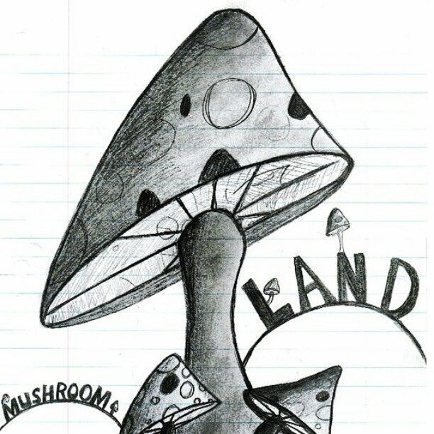 Youtube pencil drawing sketchbook