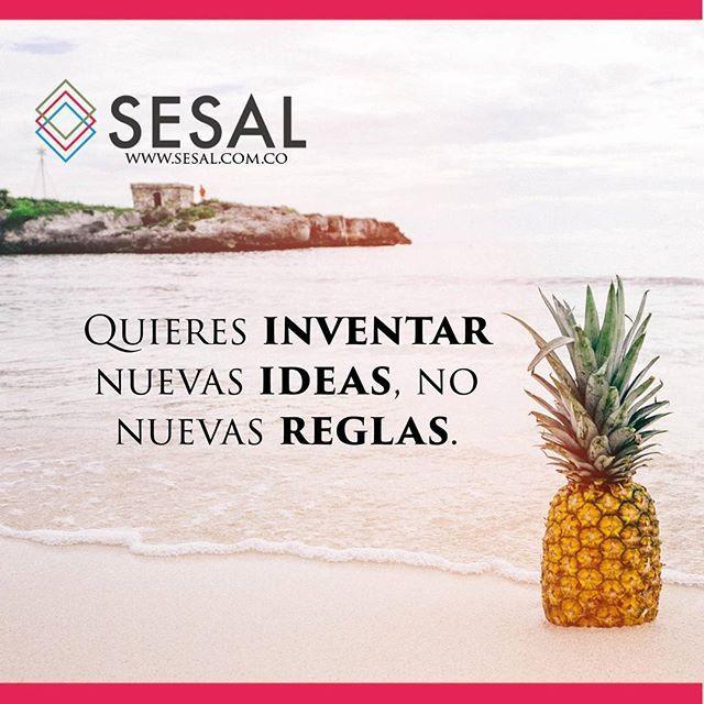 Quieres inventar nuevas ideas no nuevas reglas Dan Heath #sesal #marketing #venezuela #colombia #españa #venezolanosencolombia #marketing #marketingdigital #creamostuempresa #emprende #ssl#salud #empresas #sisepuede