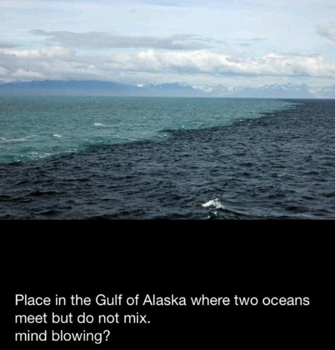 gulf of alaska two oceans meet hoax email