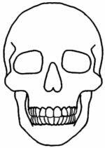 Voorstudie 1 | doodshoofd vorm