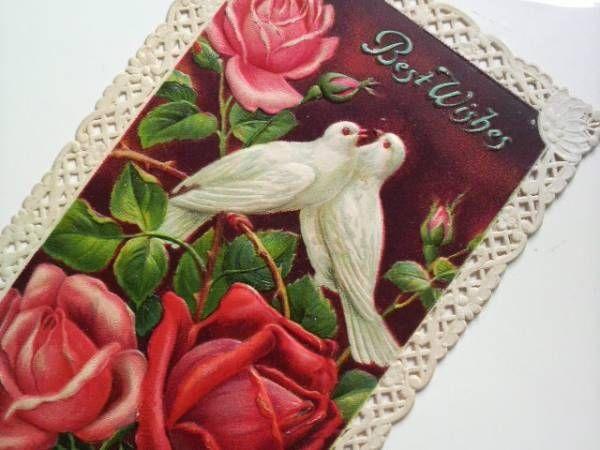 Postcard P鳩 アンティークポストカード 二羽の白鳩と赤薔薇 レース枠 インテリア 雑貨 家具 Antique ¥1500yen 〆08月30日