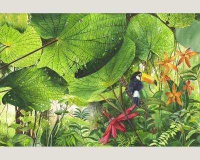 Nature-0312-71-Foto-Tapete-Vlies-Neu-Natur-Jungle-Dschungel-Dickicht-Urwald
