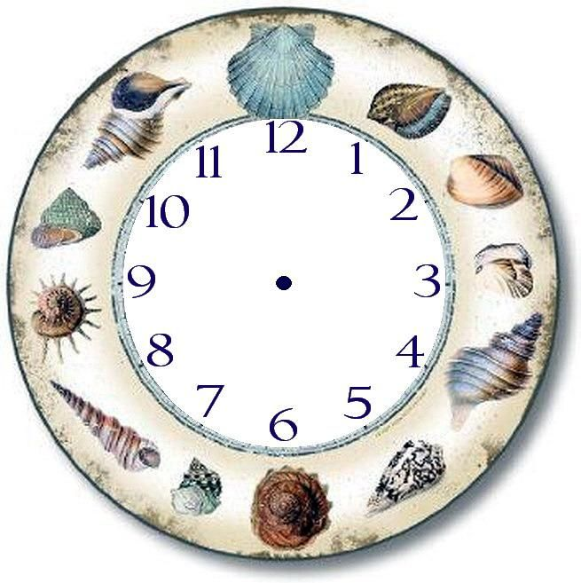 Sea shell clock face.