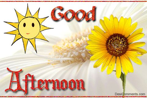 85 best Good Day, Good Afternoon  images on Pinterest
