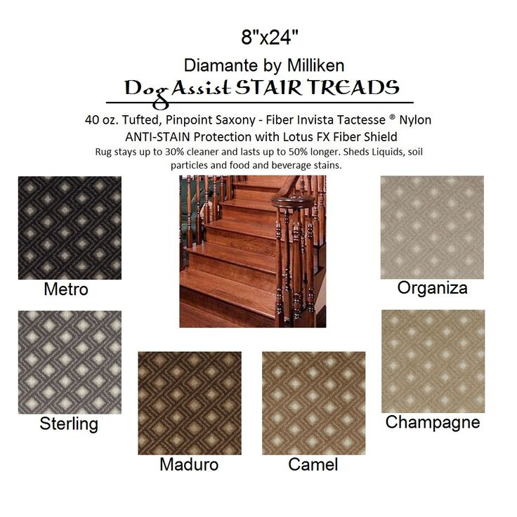 Diamante Dog Assist Carpet Stair Treads For Wood Stairs Steps Ideas With  Wooden Flooring And Wood