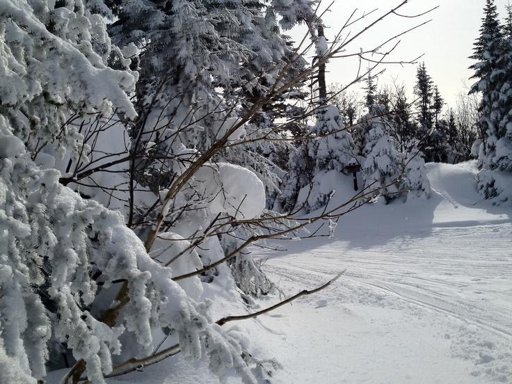 Winter wonderland in Eastern Townships Quebec