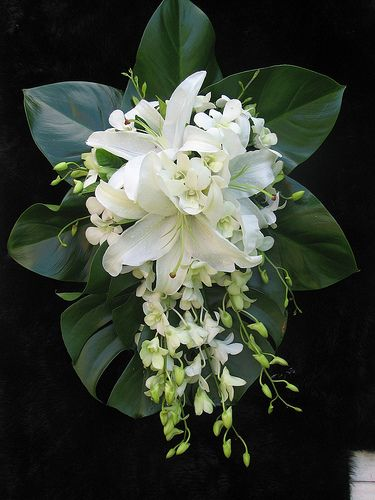 Cascade teardrop bouquet of white oriental lilies, white Singapore orchids and lush green tropical leaves.