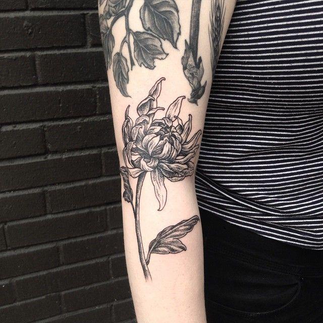 chrysanthemum by evan davis at banshee tattoo in nashville tn evandavistattoo on instagram. Black Bedroom Furniture Sets. Home Design Ideas