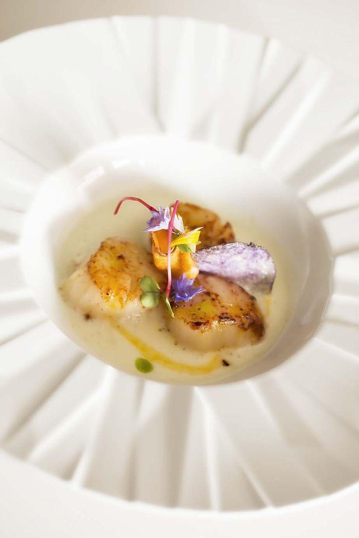 Saint Jacques scallop with mushroom foam