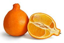 Tangelo - cross between a tangerine and a pomelo! So delicious and much easier to peel than your typical orange.