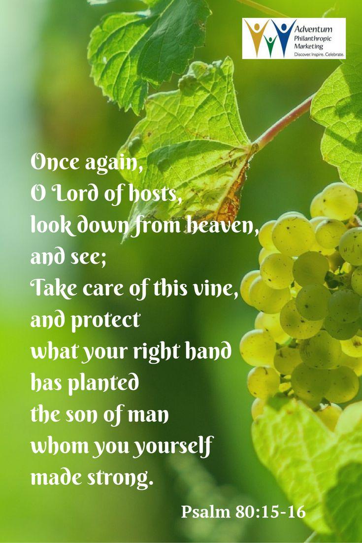 Lord, make us turn to you; let us seeyourfaceandweshallbesaved OshepherdofIsrael,hearken,from yourthroneuponthecherubim,shine forthRouseyourpower,andcometo saveusROnceagain,OLORDofhosts,lookdownfromheaven,andsee;take careofthisvine,andprotectwhatyour rightandhasplantedthesonofman whomyouyourselfmadestrongRMayyourhelpbewiththemanofyourright hand,withthesonofmanwhomyou yourselfmadestrongThenwewillnomorewithdrawfromyou;giveusnew life,andwewillcalluponyournameR