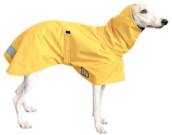 WHIPPET Dog Rain Coat, Dog Coat, Raincoat, Rain Slicker | Coats, Help me and Rain coats