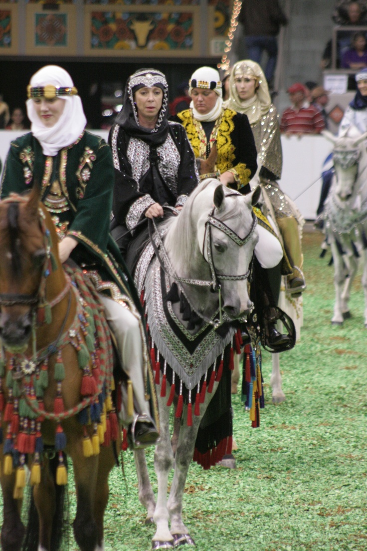 Arabian Native Costume #ArabianHorses #ShowRing | Arabians ...