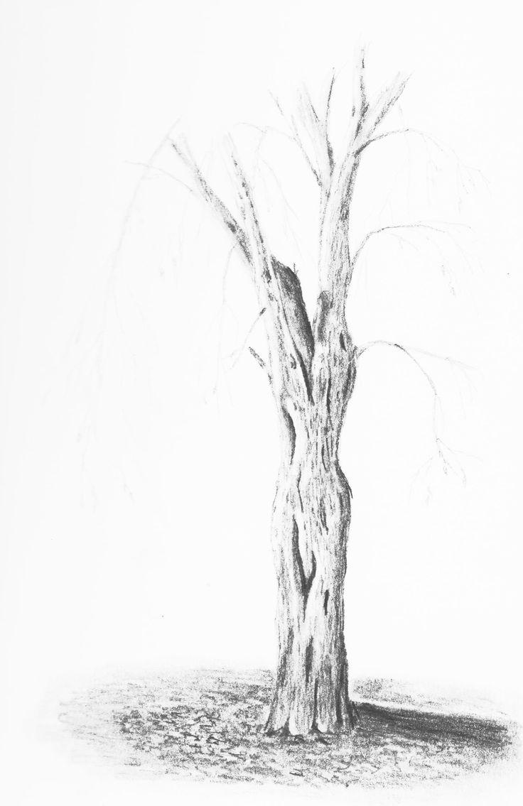 Tree by Hester Bondt