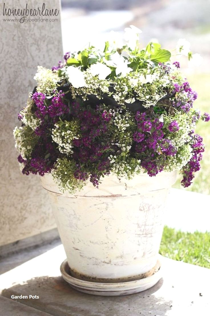 New Garden Pot Ideas Garden Pots Diy Container Flowers Diy Garden