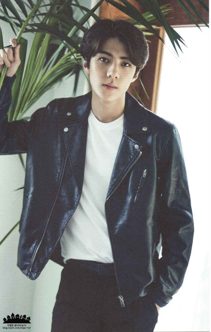 2016 Season's Greetings : Chinese Ver. - Sehun