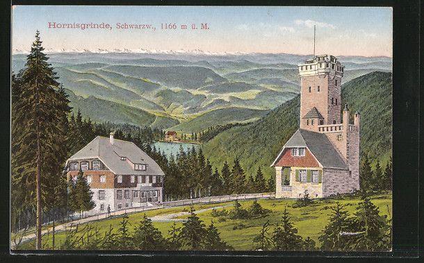 Alte Ansichtskarte: AK Hornisgrinde, Partie am Turm
