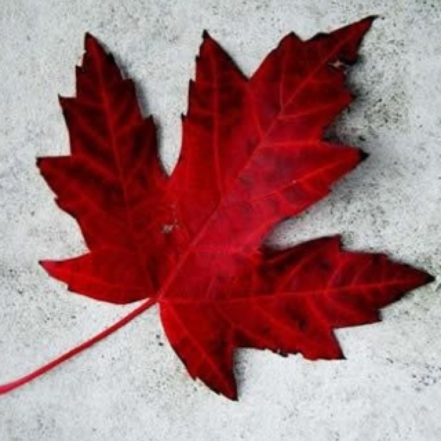 Canada 'eh