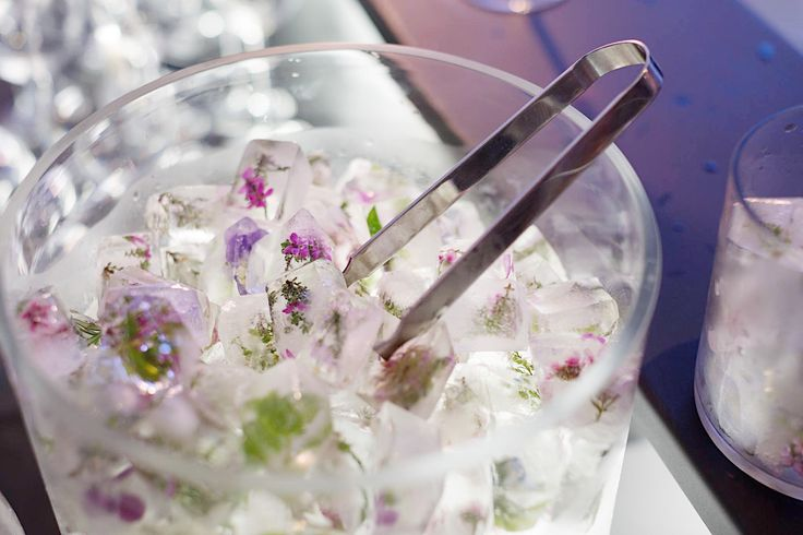 Floral ice cubes for the opening of LADY GARDEN   All edible flowers sourced and harvested from the estate. Spring Celebration   LADY GARDEN | Group Exhibition Cavalli Estate   10. 09. 2017 - 03. 12. 2017