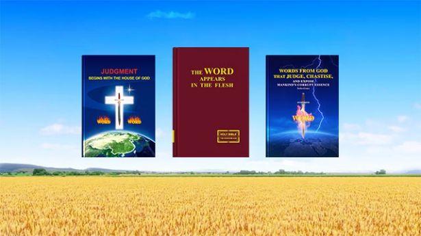 Dios redimió a la humanidad en la Era de la Gracia, así que ¿por qué todavía necesita Él llevar a cabo Su obra de juicio en los últimos días? | Evangelio del Descenso del Reino #LaPalabraDeDios #ElReinoDeDios #LaObraDeDios #LaVozDeDios #LosÚltimosDías #ElAguaDeVida #ConocerADios