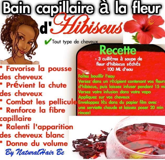 DIY Bain capillaire à la fleur d'hibiscus : 3 cs de fleurs séchées + 100 ml d'eau