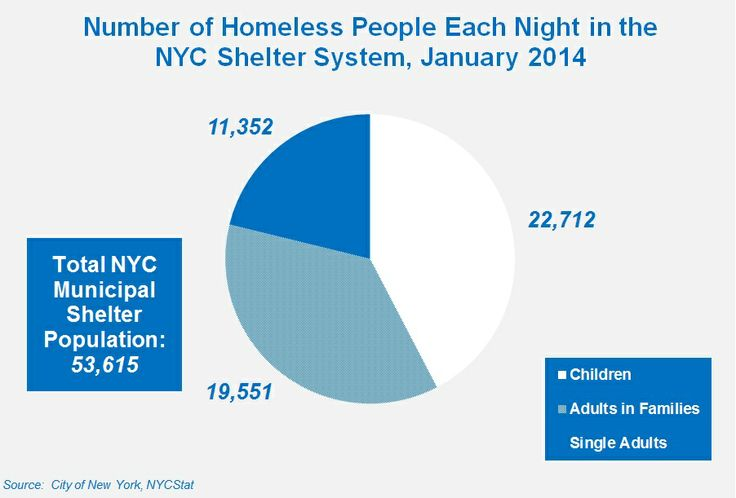 Basic Facts About Homelessness   Coalition for the Homeless