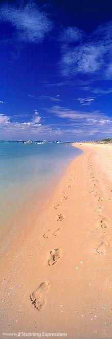 Monkey Mia Beach -  Perth, Western Australia