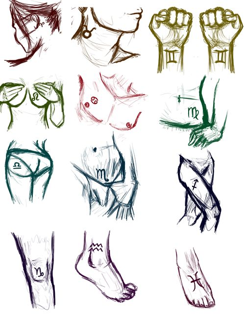 Body parts ruled by each sign of the Zodiac.