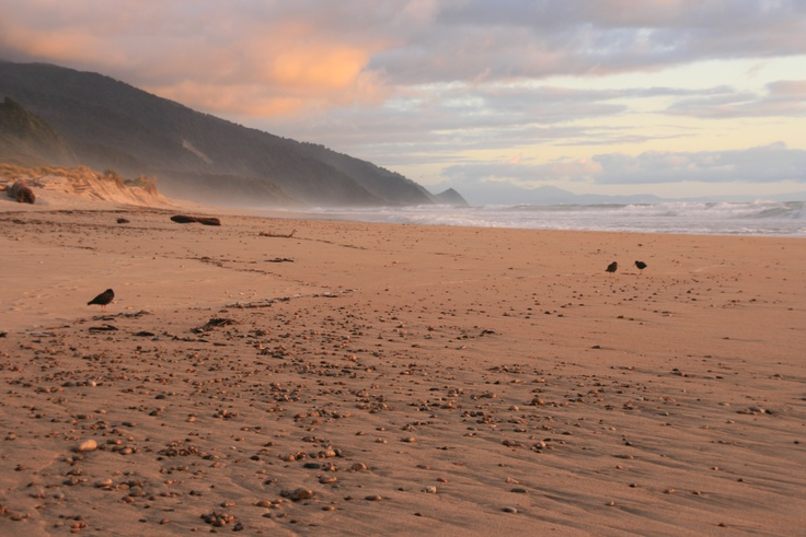 Sunset over a beach on the Heaphy Track in Kahurangi National Park.