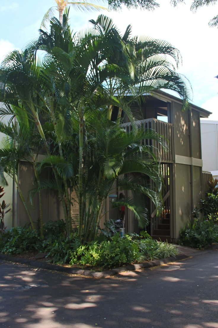Stand alone units with one condo on top floor and one condo on ground floor. Our unit is a ground floor unit with direct walk to lanai and lovely lush gardens!