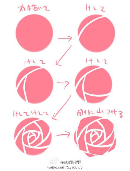 let's draw rose!