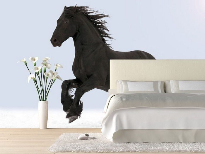 bedroom ideas with black horse wall mural horse wall murals inspiration decals - Horse Bedroom Ideas