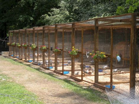 The Best Creative and Easy DIY Chicken Coops You Need In Your Backyard No 57