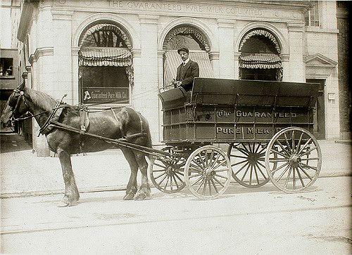 Guaranteed Pure Milk Company delivery wagon No. 36, Montre… | Flickr