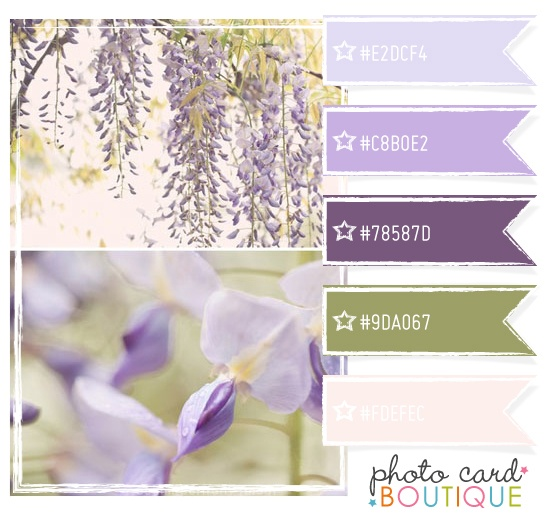 This colour combination will always make my heart sing. (Note to self: move somewhere where you can grow wisteria.)