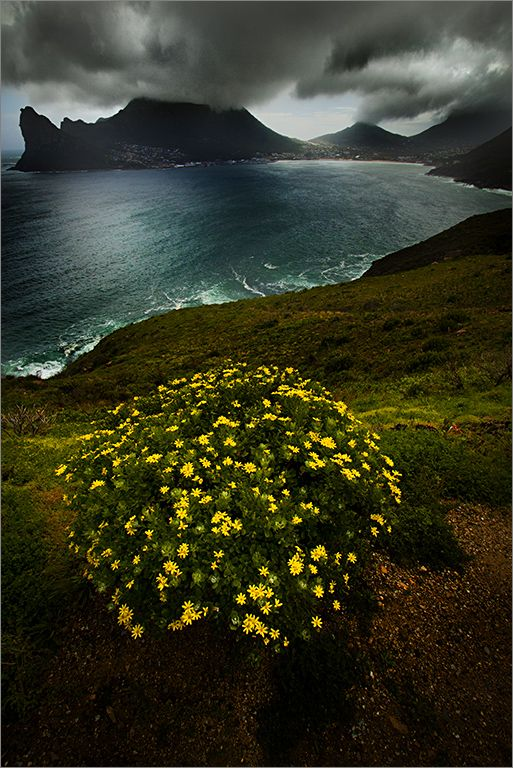 15 km south of Cape Town, South Africa by Hein Waschefort