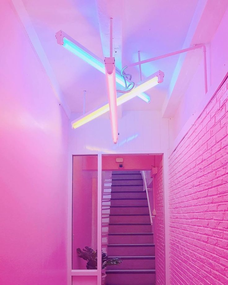 Best Neon Pink Walls In 2019 Pink Aesthetic Neon Aesthetic 640 x 480