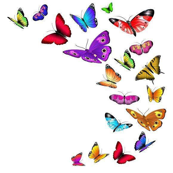 Flying Butterflies Butterfly Butterfly Illustration Butterfly Clip Art 3d Nature Wallpaper