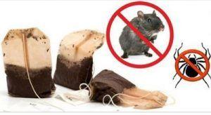 Infestazioni di topi e ragni: questo rimedio naturale li farà scomparire in poche ore. Vediamo i dettagli della semplicissima preparazione 21 maggio 2017